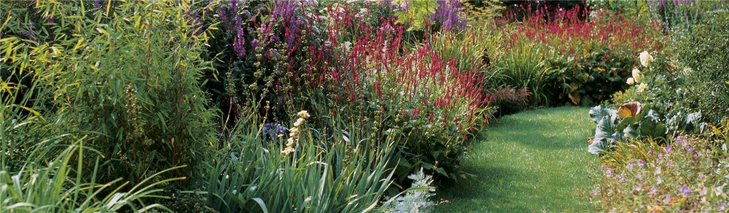 Gardena Trae El Verano A Tu Jardín
